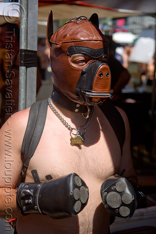 bondage dog mask and paws - dore alley fair (san francisco), bondage masks, costumes, dog mask, dore alley fair, fetish mask, human animal roleplay, leather paws, man, petplay, ponyplay, pup-play, snouts