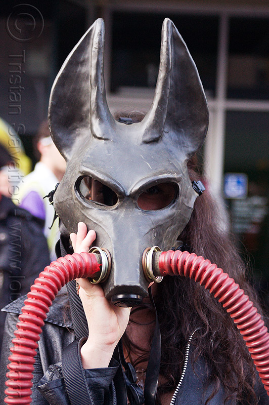 how weird 2012, dog mask, hoses, how weird festival, latex mask, woman