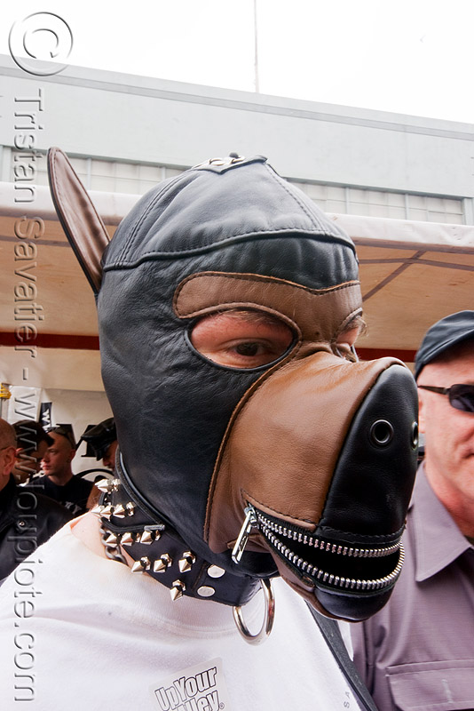 pupplay - dog mask - dore alley fair (san francisco), bondage mask, fetish mask, human animal roleplay, leather mask, man, ponyplay, snout