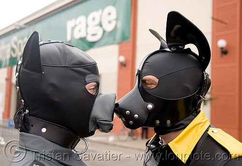 pup play - dog masks - dore alley fair (san francisco), black, bondage masks, costumes, dog masks, dore alley fair, fetish mask, human animal roleplay, leather masks, petplay, ponyplay, pup-play, rage, snouts