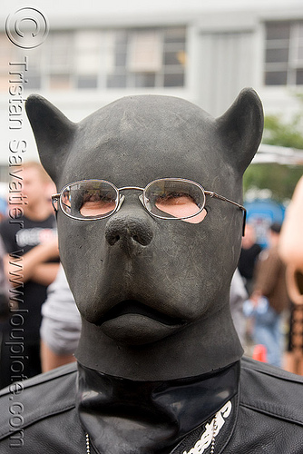 puppy play - dog latex mask - dore alley fair (san francisco), black, bondage mask, dog mask, dore alley fair, fetish mask, human animal roleplay, latex mask, petplay, ponyplay, pup-play, snout